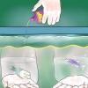 Comment ajouter le poisson à nouveau réservoir