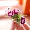 Comment organiser un bouquet de fleurs