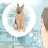 Comment demander à vos voisins à être moins bruyant
