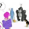 Comment être à l'aise autour des animaux
