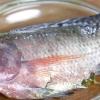 Comment faire bouillir le poisson