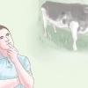 Comment acheter du bétail