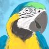 Comment prendre soin d'un perroquet