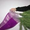 Comment prendre soin d'un arbre de noël clinquant