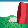 Comment attraper une souris