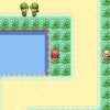 Comment attraper un pokémon dans un jeu