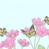 Comment attraper des papillons