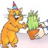 Comment fêter l'anniversaire de votre chat