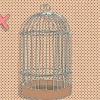 Comment choisir une cage pour un perroquet
