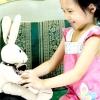 Comment choisir des jouets pour les enfants autistes