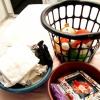 Comment nettoyer une chambre avec votre enfant