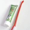 Comment nettoyer les dents de votre chien