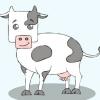 Comment dessiner des animaux mignons de bande dessinée