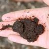 Comment trouver les ingrédients de compost gratuits