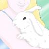 Comment faire face au comportement violent de lapin