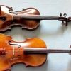 Comment faire la distinction entre violons et altos