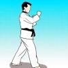 Comment faire un inverse en taekwondo