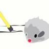 Comment divertir votre chat avec un jouet souris de chat