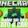 Comment trouver les pommes de terre dans minecraft pe