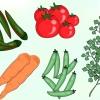 Comment congeler les légumes du jardin