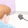 Comment obtenir une souris hors de la maison