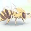 Comment se débarrasser des abeilles