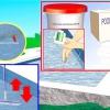 Comment se débarrasser des algues tache noire dans votre piscine