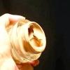 Comment se débarrasser des taches de rousseur
