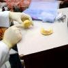 Comment faire pour obtenir le jour même analyse dentaire et restaurations de dents