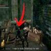 Comment faire pour obtenir l'épée de drake dans les âmes sombres