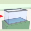 Comment élever des poissons
