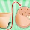 Comment cultiver des herbes en pots