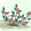 Comment cultiver des roses miniatures de boutures