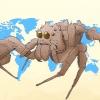 Comment identifier une araignée portia