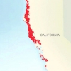 Comment identifier un séquoia