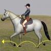 Comment sauter un grand saut sur un cheval / poney