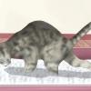 Comment garder un chat à partir de coups de pied la litière hors de la litière