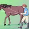 Comment suivre votre formation chevaux