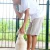 Comment garder votre chien à l'abri des chiens moyennes