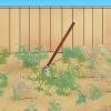 Comment déposer une pelouse de gazon