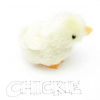 Comment se occuper d'un poulet en peluche