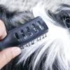 Comment maintenir les cheveux d'un animal de compagnie