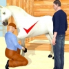 Comment maintenir une bonne soin des sabots de votre cheval