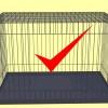 Comment faire une cage d'oiseau d'une cage de chien