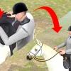 Comment faire une course de cheval plus rapide