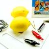 Comment faire une horloge de citron alimenté