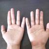 Comment faire un lézard avec vos mains