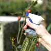 Comment faire jardin pulvérisation de camomille