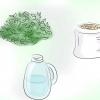 Comment faire du jus de plante fermenté (engrais organiques)