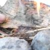 Comment faire du feu sans allumettes ou un briquet